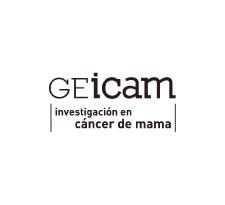 Logo GEICAM